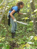 Judith making trails in the bush