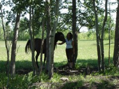 Judith trying to catch a wild horse