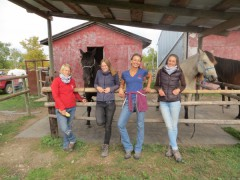 Horse trainers at the hitching post
